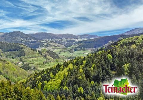 Landschaft Schwarzwald mit Logo Teinacher